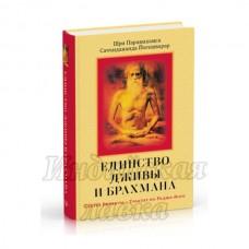 Единство Дживы и Брахмана. Секрет Веданты. Часть I. Саччидананда Йогешварар.